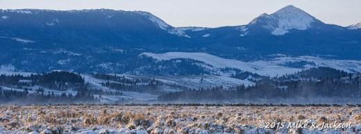 Running Elk Herd
