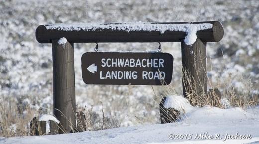 Schwabacher Sign