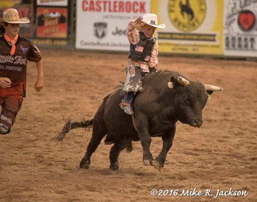 Pee Wee Bull Rider