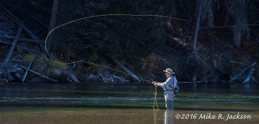 Snake River Fisherman