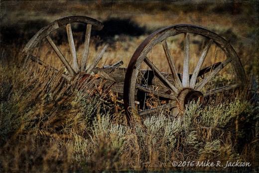 Kelly Wagon Wheels