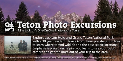 Teton Photo Excursions