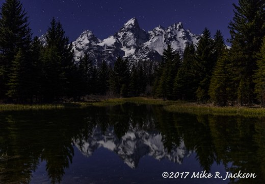 Night at Schwabacher