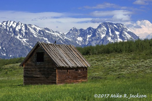 Shed and Mt. Moran