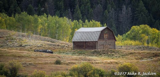 Barn with Aspens