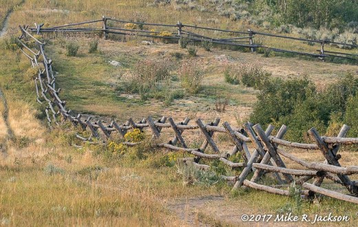 Buck Rail Fences