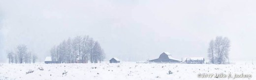 Winter Homestead