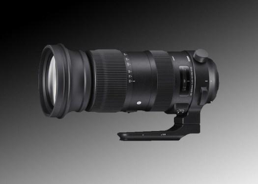 Sigma Sport 60-600mm Lens