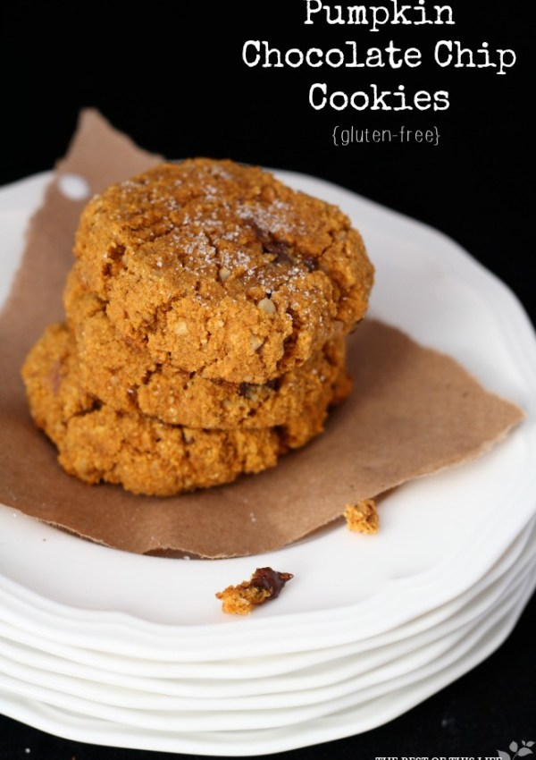 Ooey Gooey Pumpkin Chocolate Chip Cookies