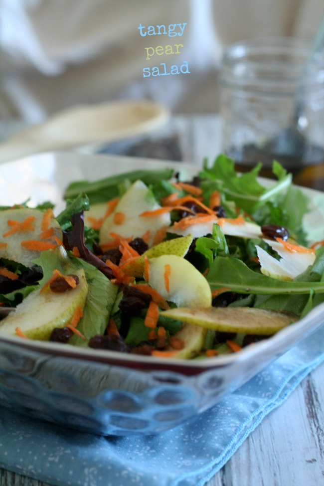 Tangy Pear Salad with Raisins and Carrots   The Best of this Life