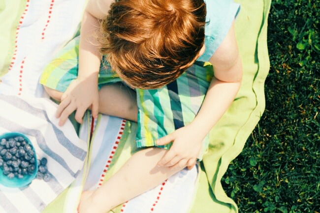 How to Plan an Afternoon Picnic with Kids   The Best of this Life