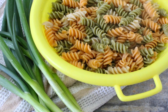 The Best Vegetarian Pasta Salad made with gluten-free vegetable pasta
