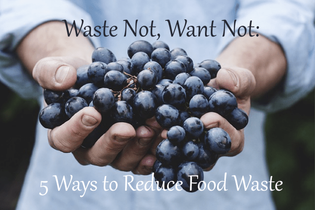Waster Not, Want Not 5 Ways To Reduce Food Waste