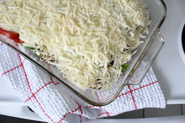 Making Zucchini Lasagna Layer of Cheese or Daiya Mozza Style for dairy-free