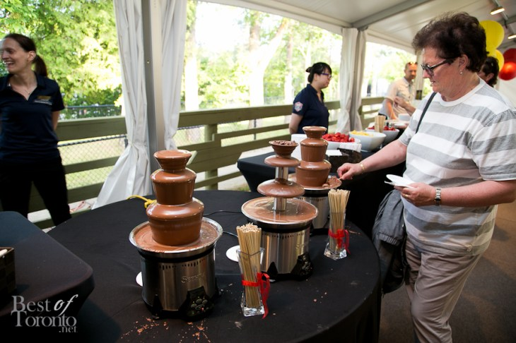 Chocolate fountain paired with your choice of dessert wines