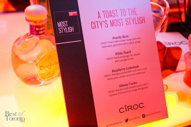Toronto-Life-Most-Stylish-Party-2013-BestofToronto-013