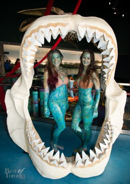 Ripleys-Aquarium-BestofToronto-2013-004