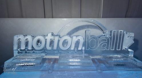 Motionball-Gala-Special-Olympics-BestofToronto-2014-046