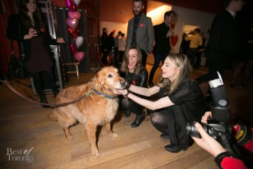 Paws-for-the-Cause-BestofToronto-2014-007