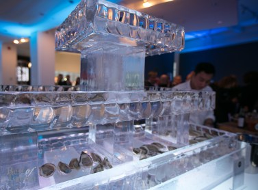 Oyster bar served on ice by Rodney's Oysters