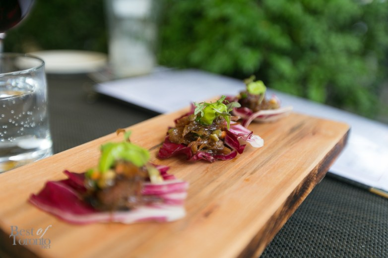 Braised lamb with lentils on a bed of radicchio   Photo: Nick Lee