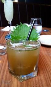 Kyuri sake with gin, sake, yuzu sour and cucumber garnished with a shisho leaf