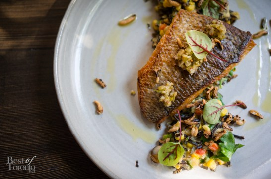 White Bass - Wild Rice, Succotash, Smoked Clams | Photo: John Tan
