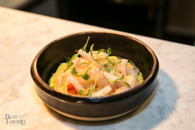 "Ceviche with spot and tiger prawns, bay scallops, daikon, ""jolo"" butter"