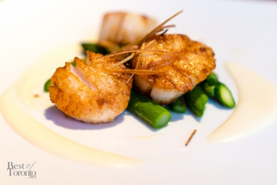 Capesante al tartufo | Seared scallops with truffled cauliflower puree, sautéed asparagus and crispy leeks