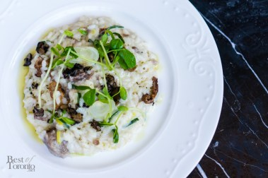 Wild boar risotto | barbecue boar, shallots, goat cheese, leeks, mushrooms, truffle oil