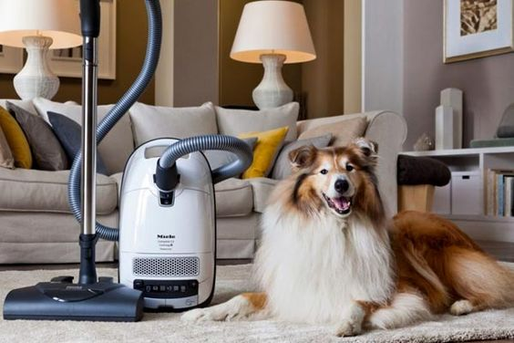 Top 10 Best Vacuum Cleaners For Long Hair (2019) - Best of