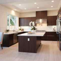 Slab Kitchen Cabinets Paint Colors Everything About Cabinet Doors Aka European Style