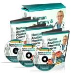 Human Anatomy & Physiology Course