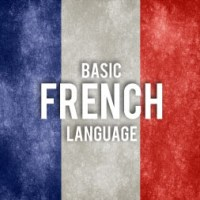 Alison Basic French Language Skills