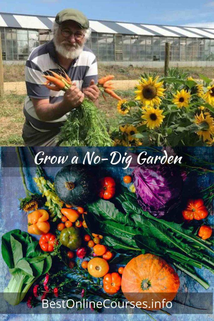 Grow a No-Dig Garden