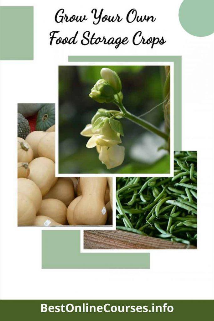 GrowYourOwn Food Storage Crops