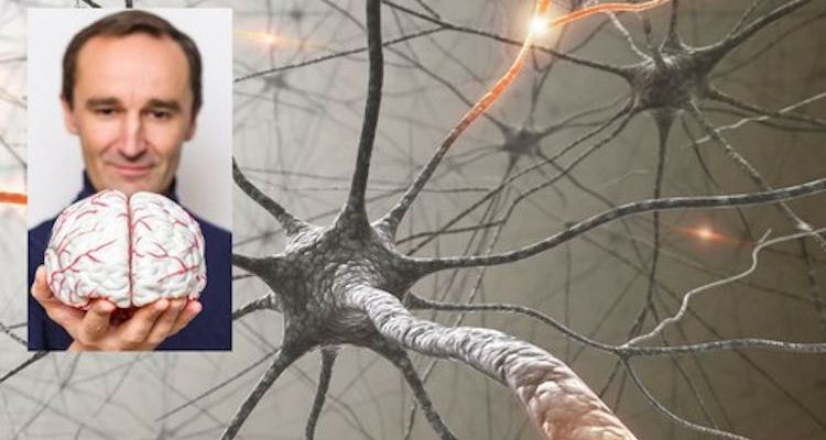 Harness The Power Of Neuroplasticity And Take Your Life back