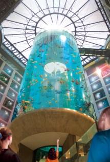 Aquadom In Berlin Germany - Beautiful
