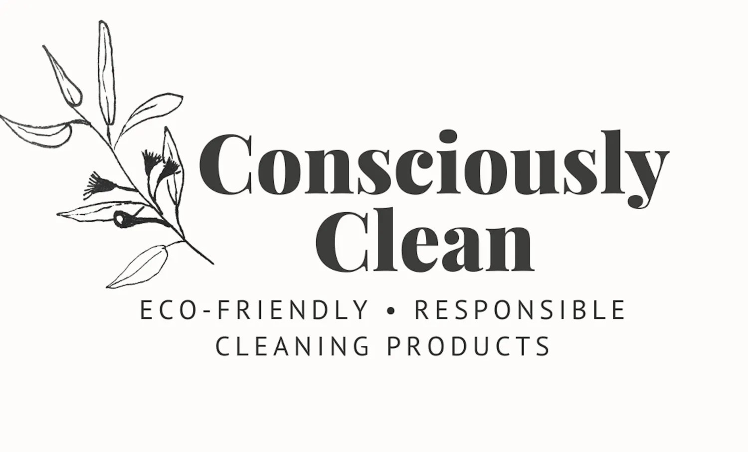 Consciously Clean Currumbin