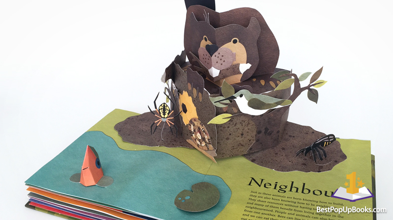 Welcome To The Neighborwood Pop Up Book Best Pop Up Books