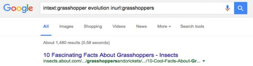 Grasshoppers in the URL