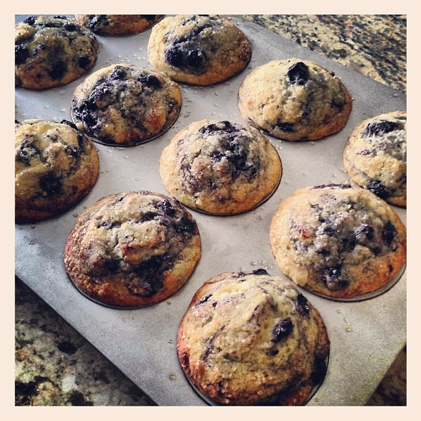 Lemon Encrusted Blueberry Muffins