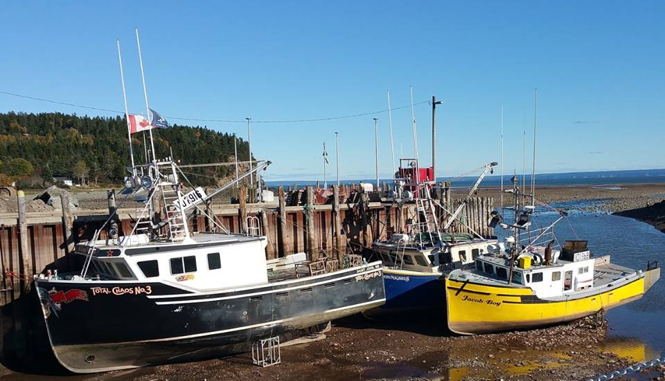 boats at low tide alma new brunswick canada
