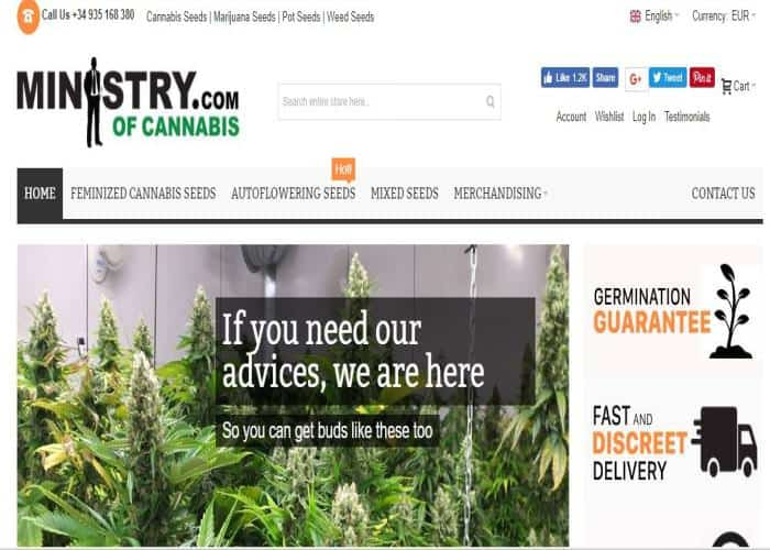 Ministry of Cannabis Review