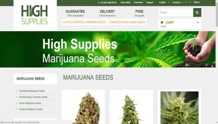 High Supplies Seed Bank Review