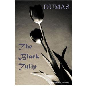 Laleaua Neagră [eBook]