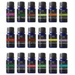 Radha Beauty Aromatherapy 18 Essential Oils (Lavender, Tea Tree, Peppermint, Lemongrass, Orange, Eucalyptus, Rosemary, Frankincense, Bergamot, Ylang Ylang, Patchouli, Geranium, Grapefruit, Cinnamon)