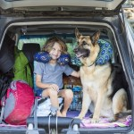 5 Suv Storage Containers You Need For Your Next Road Trip