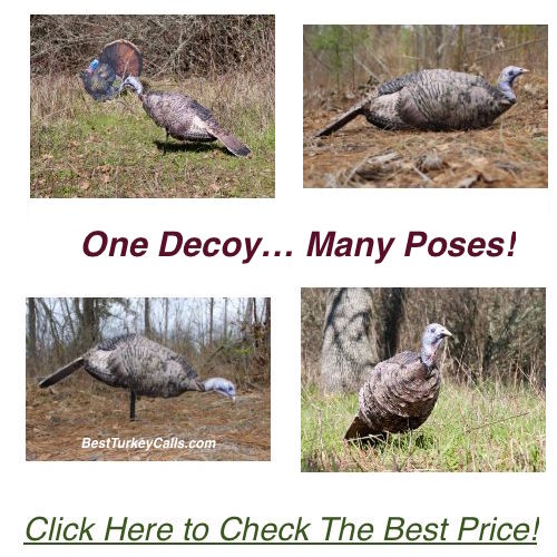 Montana Decoy Miss Purr-fect Turkey Decoy