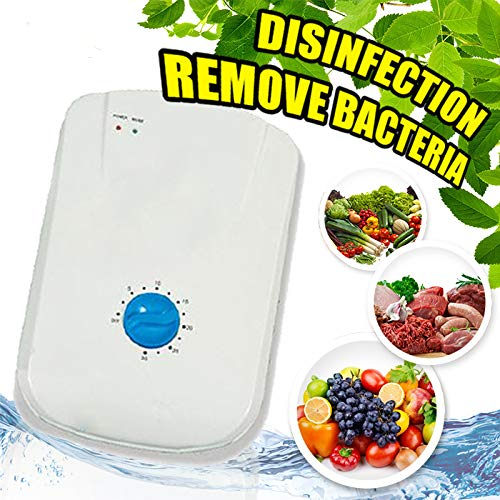 ARC Vegetable cleaner online in india